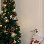 【我家圣诞树】第一颗圣诞树