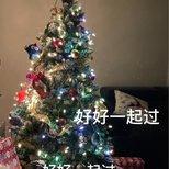 【我家圣诞树】希望每天都开开心心