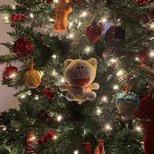 【我家圣诞树】特别的圣诞节