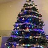 【我家圣诞树】重在参与~Merry Xmas