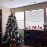【我家圣诞树】圣诞树和我家汪